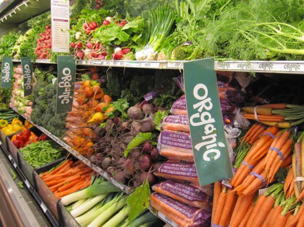 organic-1-84.jpg