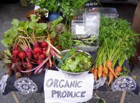 organic-2-85.jpg
